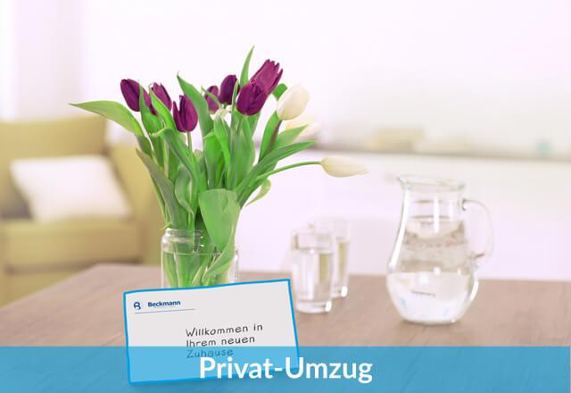 Privat-Umzüge